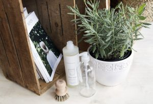 lavender and common goods