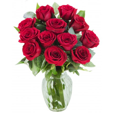 Classic Red Roses (12 Red Roses)